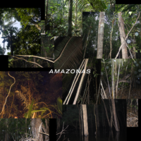 'AMAZONAS [LP]' artwork