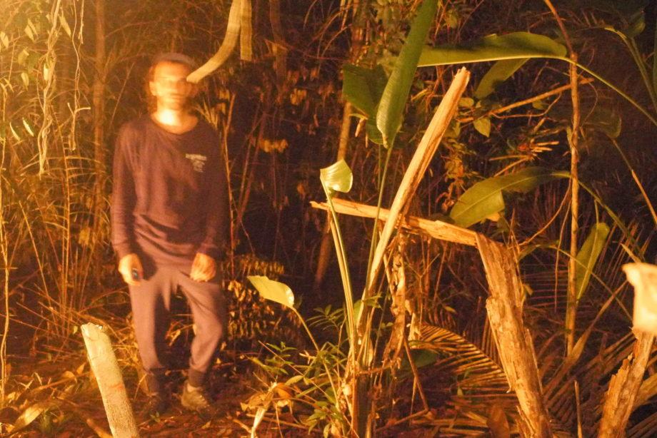 Bill cutbill jungle 3